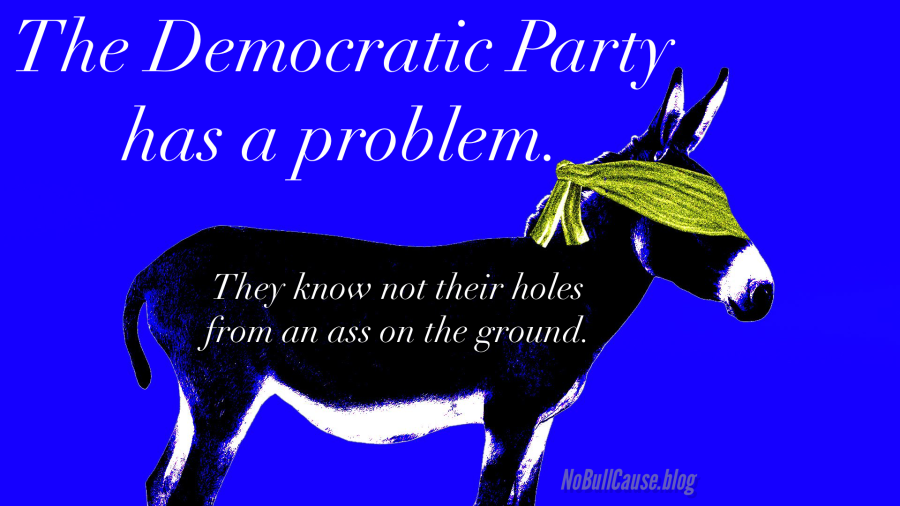 What Will the Democrats Do Now? They only have two choices, both reallybad.